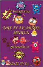 ORTAYA KARIŞIK MORUK  by Zomayli-_-