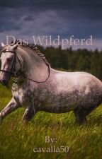 Das Wildpferd #Wattys 2017 by cavalla50
