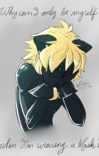 problemas de un gato by neko_chan5