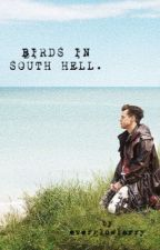 Birds in South Hell [LS Editando] by everglowlarry