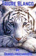 Tigre Blanco (Sterek) by GabrielaMachado215