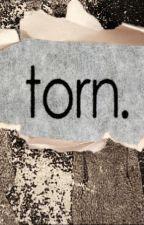 TORN by ikayunia27