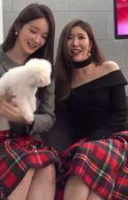 Davichi Gả cho Lee tổng (Minri couple) (End) by CaCao4