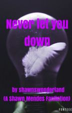 Never let you down (A Shawn Mendes Fanfiction) by Shawnswonderland