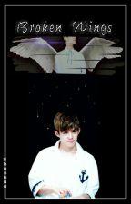 Broken Wings [CheolSoo] by Shushua-ya
