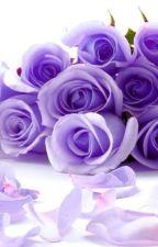 [ Shortfic - BoiFang ] Cành hoa hồng tím by WMG_AGT