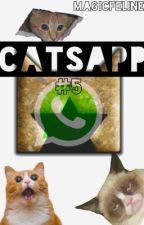 Catsapp #5: Notificaciones Peligrosas. (Warrior Cats Whatsapp) by MagicFeline