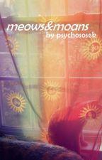 meows&moans | taegi by psychososek