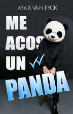 Me Acosa Un Panda © by AyaxVanEyck
