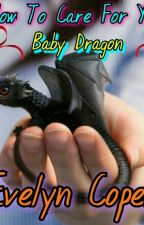How To Care For Your Baby Dragon by BigMackAndEvie