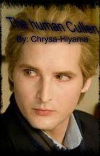 The human Cullen by Chrysa-Hiyama