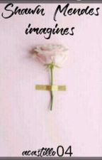 Shawn mendes imagines  by Acastillo04