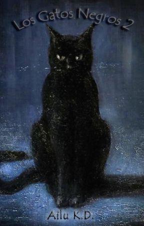 Los Gatos Negros 2 by AiluKD