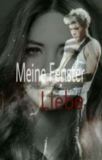 meine fenster liebe (niall horan FF) by lala_onedirection