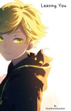 Leaving You | Chat Noir X Reader by ClockWatchGuardian