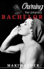Owning the Untamed Bachelor #NANOWRIMO by makiwander
