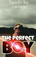 The Perfect Boy [HIATUS] by Nhaaaa_