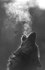 Howl by Caffeinatedchi