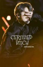 Certified Bitch || PJM by Dreamer1a