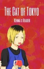 The Cat of Tokyo (Kenma Kozume x Reader) by kenmapplepi