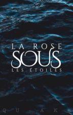 La Rose sous les étoiles - Shawn Mendes by Loumoxx