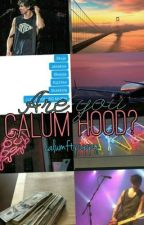 Are you Calum Hood? by calumftpuppy