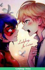 La muerte de leidybug  by Luna48YT