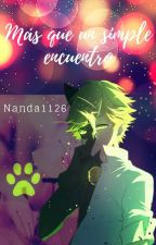 Más que un simple encuentro (Chat noir y tu) by nanda1126