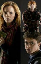 Harry Potter Zeitreise in die Vergangenheit  by Cobra06