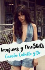 Imaginas y OneShots (Camila Cabello y tú) by FxckingDxpe