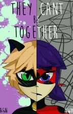 They can't be together (Adrien\ChatNoir y tu) by AlaskaShaNir