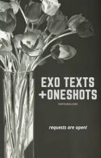 exo texts + oneshots | requests are open! by pastelmallows