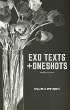 exo texts + oneshots ;; EDITING by trashforjihoon