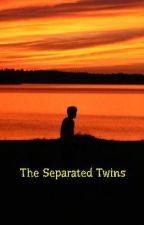 The Separated Twins by profmoron