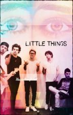 Little Things - Fanfic One Direction - Secuela de No control by HazzaleaOficial
