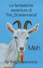 Le fantastiche avventure di The_Scaramosca  by The_Scaramosca