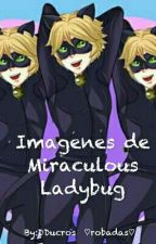 Imagenes de Miraculous by DDucros