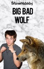 Big bad wolf ft teen wolf by shxwnsbaby