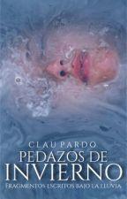 Pedazos de Invierno by claupardo