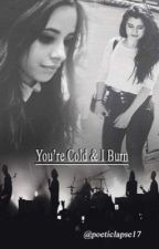 You're Cold and I Burn (A Camren One shot) by poeticlapse17