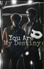 'YOU ARE MY DESTINY' (CHANBAEK) (18+) by GitaOktavianti