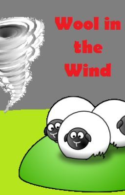 Wool in the Wind