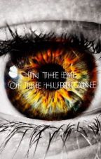 In the Eye of the Hurricane by MLGCatQueen