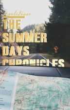 The Summer Days Chronicles (boyxboy) by realswiftie