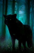 A true Wolf (boyxboy) by gizzmo246
