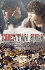 Zhentan High (On-Hold) by TobioKei