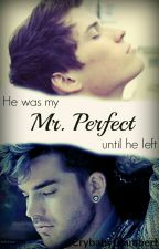 Mr Perfect  by CrybabyGlambert