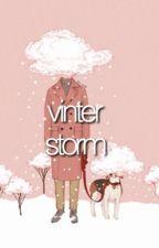 vinterstorm by steinerrudy