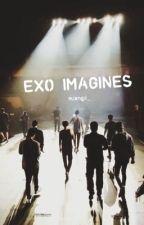 EXO IMAGINES by mjxngji_