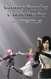 Various female x male reader (Request Close) - Cinder x Male